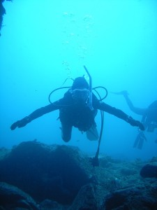 イスズミ礁
