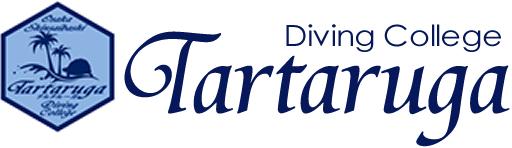 タルタルーガ